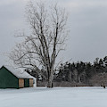 Green Barn by Bob Doucette