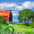 Green Bike On The Farm by Debra and Dave Vanderlaan