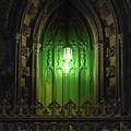 Green Door At Night by Sharon Popek