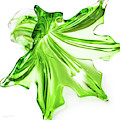 Green Glass Vase by Sharon Popek