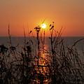 Gryn Goch Sunset by James Lavott