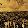 Gualaceo, Ecuador Panorama  by Al Bourassa