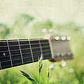 Guitar In Country Meadow by Images By Victoria J Baxter