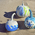 Halloween Blue And White Pumpkins On A Dune by Bill Swartwout Photography