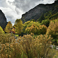 Hanging Lake Trail Fall Colors by Ray Mathis