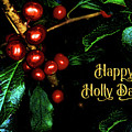 Happy Holly Days by Anita Pollak