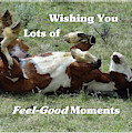 Happy Horse Roll by Kae Cheatham