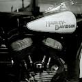 Harley-davidson Engine by Shaun Higson