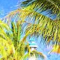 Harvest Caye Palms by Alice Gipson