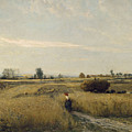 Harvest  by Charles Fran  ois Daubigny