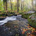 Hatch Brook by Bill Wakeley
