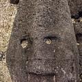 Hawaiian Stone Face by Max Huber