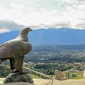 Hawk Overseeing Village. by Raymond De la Croix