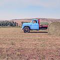 Hay Harvest Montana by Edward Fielding