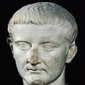 Head Of Tiberius  by Roman School