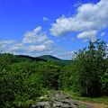 Heading Bear Mountain Connecticut On The Appalachian Trail by Raymond Salani III