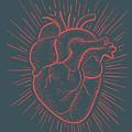 Heart On Red by Bernardo Ramonfaur