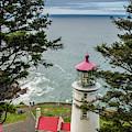 Heceta Head Lighthouse by Matthew Irvin