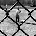 Heckscher Ballfields by Michael Gerbino
