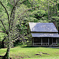Henry Whitehead Cabin by Nicholas Blackwell