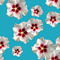 Hibiscus Flower Pattern by Christina Rollo