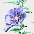 Hibiscus Lilac Grey by Go Van Kampen