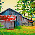 Hidden Sheep Barn by Stacey Neumiller