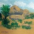 High Desert Rock Garden by George Dalton