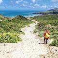 Hiking To Sandfly Bay New Zealand by Joan Carroll