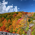 Hillside Of Color by Dan Friend