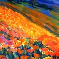 Hillside Poppy Burst by Therese Fowler-Bailey