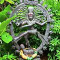 Hindu Statue  by David Lee Thompson