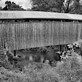 Historic Red Covered Bridge Black And White by Adam Jewell