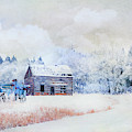 Hoar Frost On Long Lake Road by Theresa Tahara