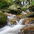 Hogcamp Branch Falls I by William Dickman