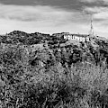Hollywood California Sign In The Hills - Black And White Edition by Gregory Ballos