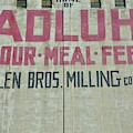 Home Of Adluh Flour Meal Feed Mill by Lisa Wooten