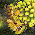 Honey Bee On Wild Golden Glow by Holly Michelle Hargus
