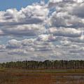 Hopkins Prairie by Paul Rebmann
