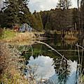 Horning's Home by Cyryn Fyrcyd