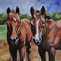 Horse Art  by Maria Reichert