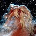 Horsehead Nebula With Horse Head Outer Space Image by Bill Swartwout Photography
