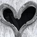 Horseshoe Heart by Elisabeth Lucas
