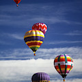 Hot Air Balloons  by Steve Estvanik