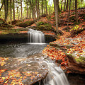 Houghton Falls Nature Preserve by Susan Rissi Tregoning