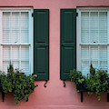 House Eyes by Susie Weaver