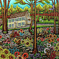 House In The Meadow  by Amy E Fraser