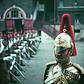 Household Cavalry by John Chillingworth