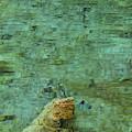 Hypnotizing Lake 1 by Angelina Tamez