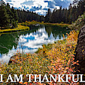 I Am Thankful by G Matthew Laughton